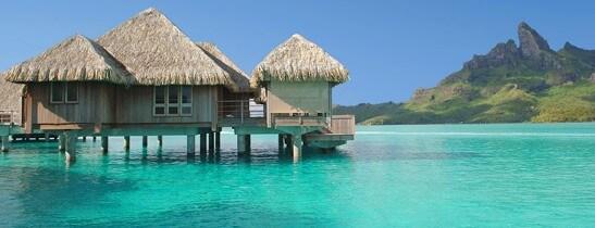 Tahitian Indulgence