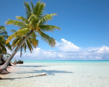 Cook Island Honeymoons Quote Request